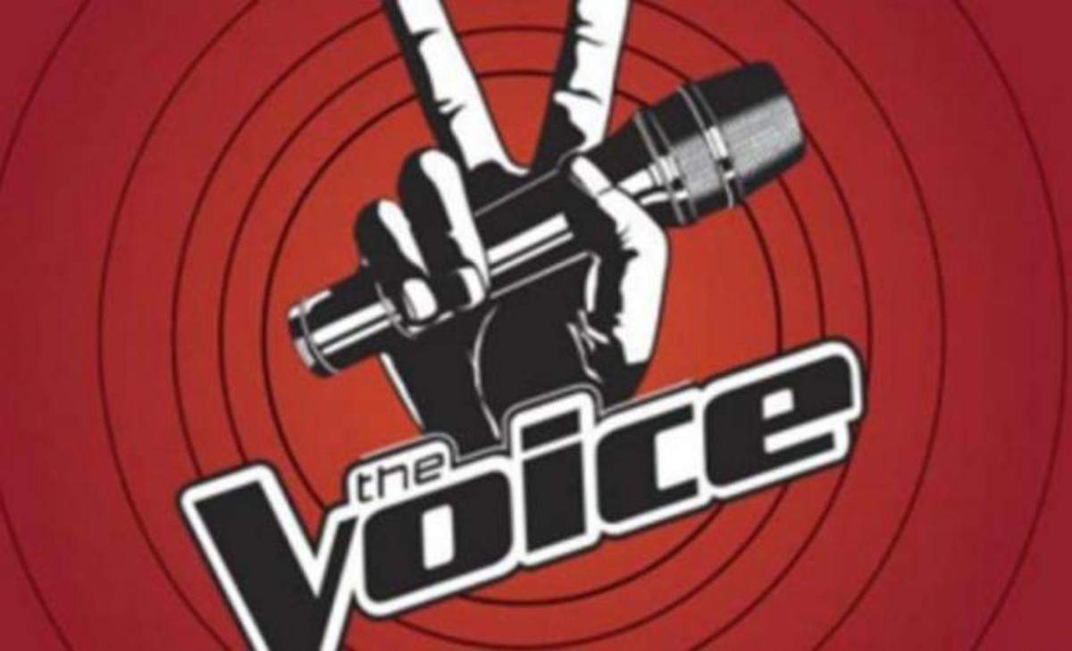 zp_26211_voice_logo.jpg