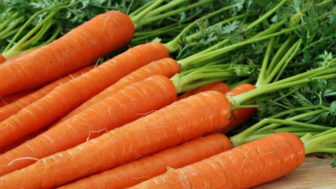 καρότα