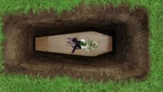 νεκροθάφτης